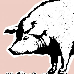 Pearls To Pigs